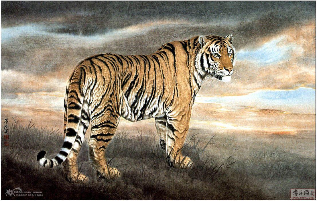 白描图片动物猛虎