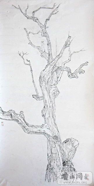 梨树的简笔画步骤
