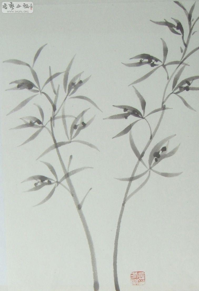 花卉素描简笔画图片